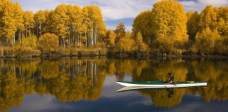 Best Fall Trips to Plan with One of the Best Travel Apps.