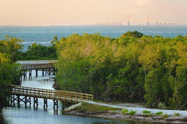 Gulf coast jaunt