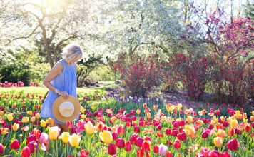 Cheap hacks to beautify your garden to sell your house fast.