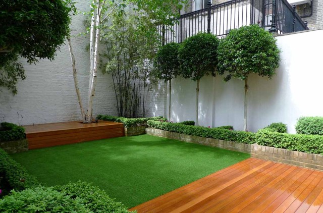 Low-Maintenance Landscaping trees