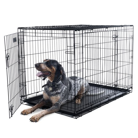 Crate Training