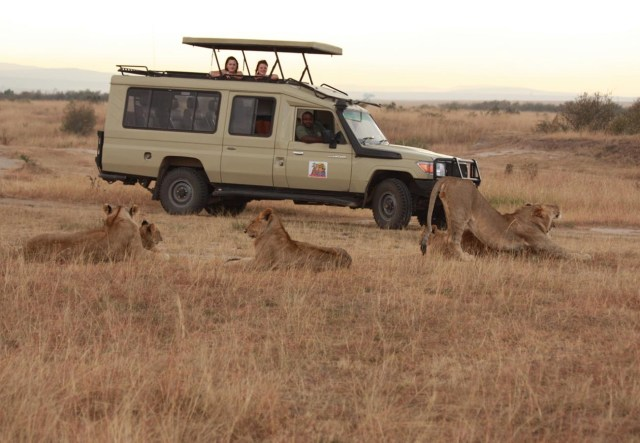 Distinguish Between Cheap Safaris and those that offer Value