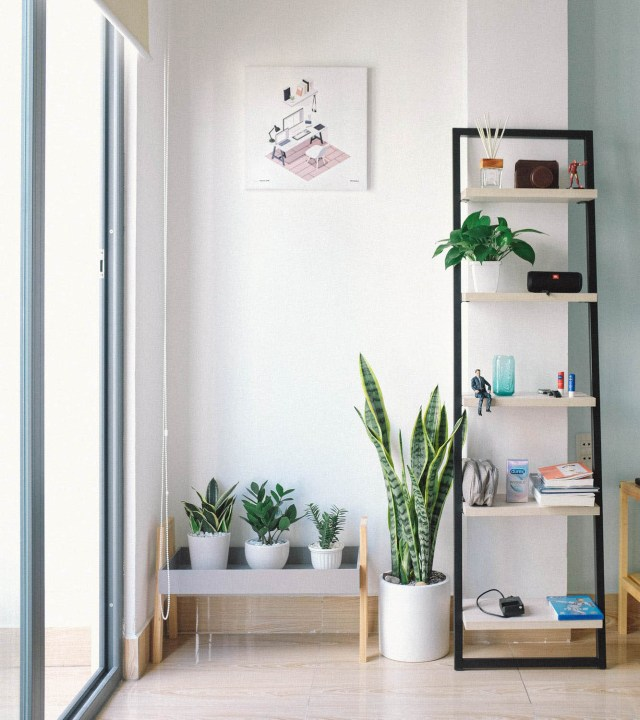 What is a Minimalist Home