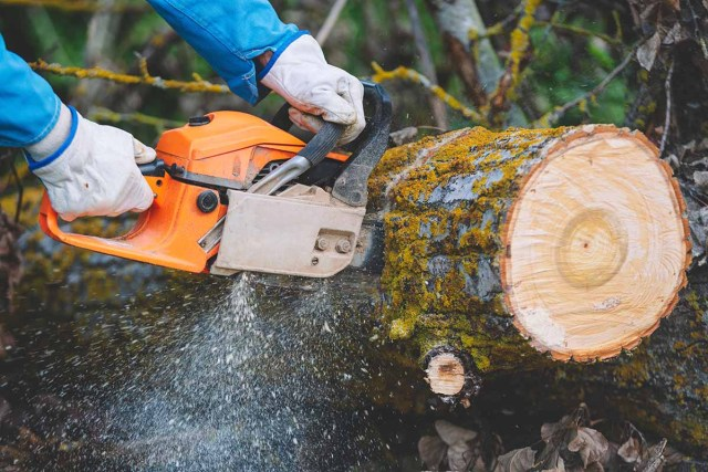 Advantages of Electric Chainsaws