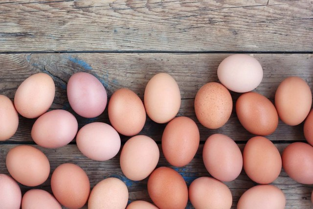 protein in egg yolk