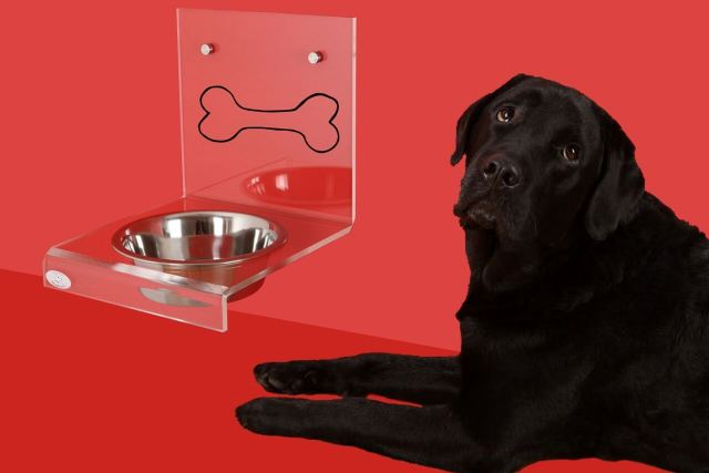 Benefits of Elevated Pet Bowl