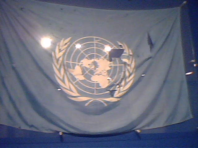 The UN Flag