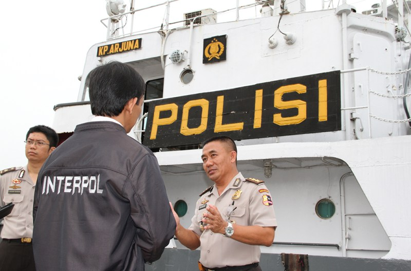 Over the past decade INTERPOL has shown it is uniquely placed to enable police in all continents to work together beyond borders in tackling all forms of environmental crime