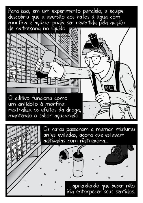 Ratolândia (Rat Park)