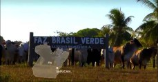 O caso dos escravizados na Fazenda Brasil Verde