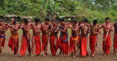 waiãpi, indígenas, 9 homens, homens tocando instrumento de sopro, celebração indígena, massacre, indigenismo, roupas vermelhas