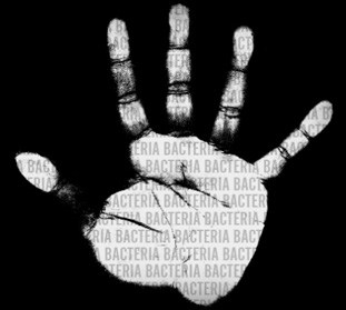 Hand_bacteria_2