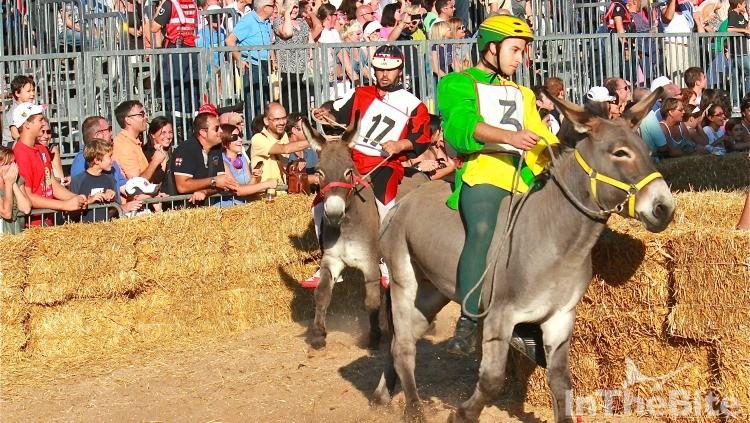 donkey-racing