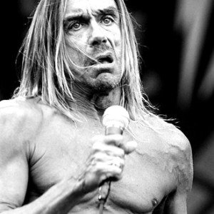 iggy pop & the stoogies