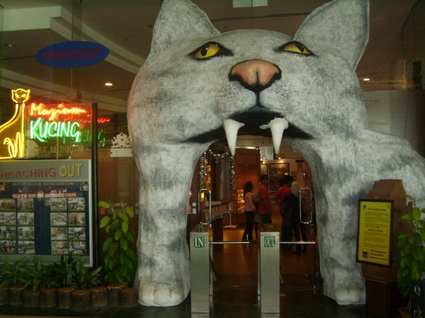 Wandering Feline Kind In Kuching' Cat Museum