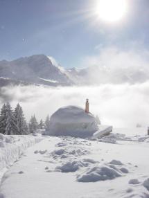 Sleeping Snow Inthesnow