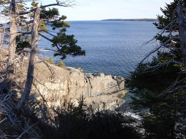 Scenic Overlook from Homestead 2