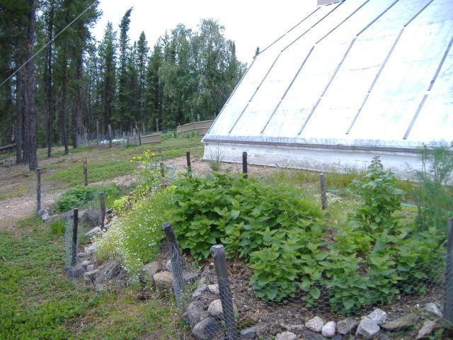 Saskatchewan Herb Garden