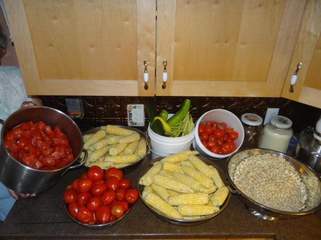 Day's Harvest