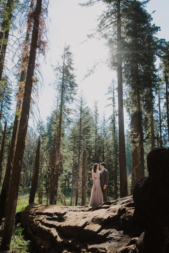 Julia and Jeffreys Magical Sequoia National Park Wedding