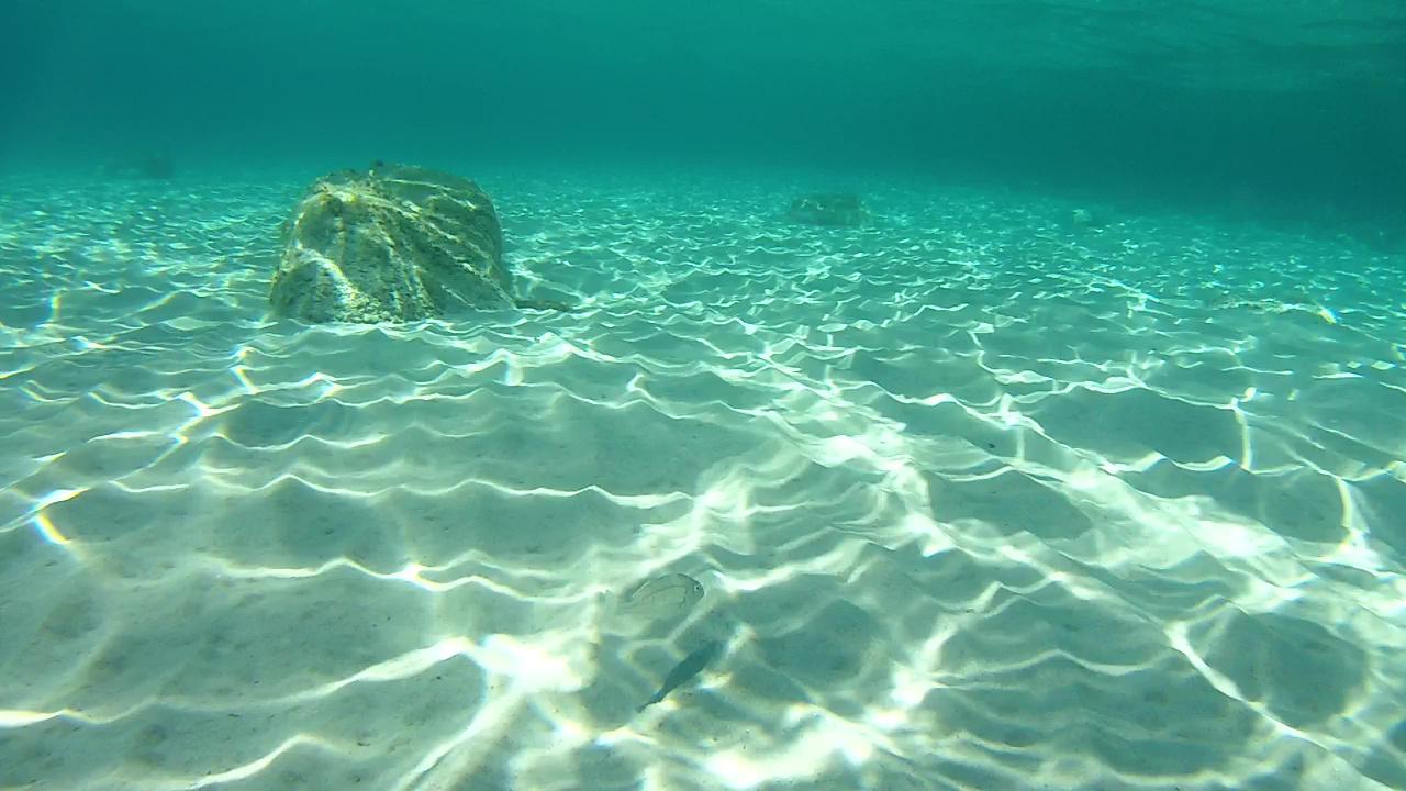 Mormora Snorkeling in Sardegna intotheblue.it