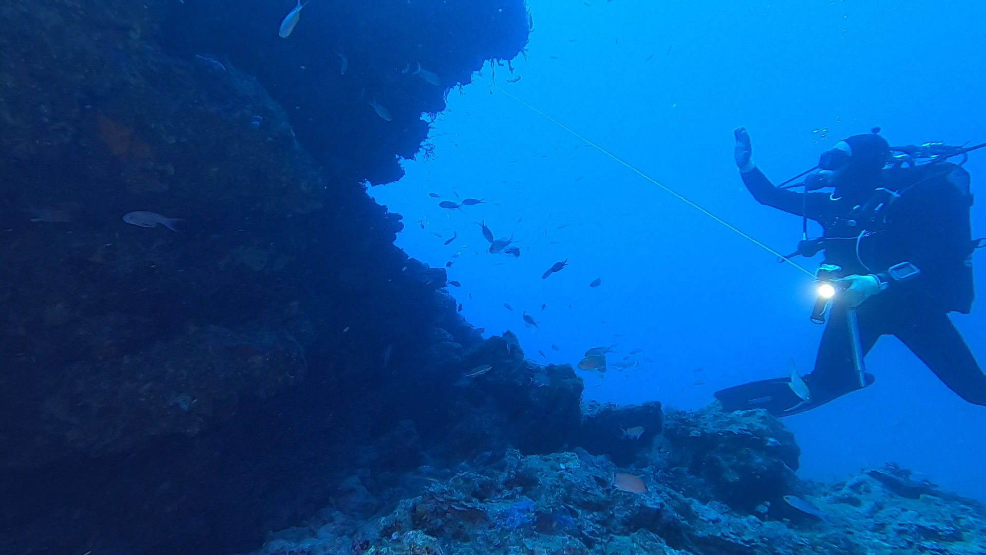 Wonderful red coral wall - intotheblue.it