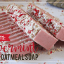 Easy Diy Gifts Peppermint Oatmeal Soap