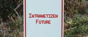 Intranetizen explained