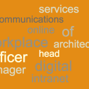 What does your intranet job title mean?