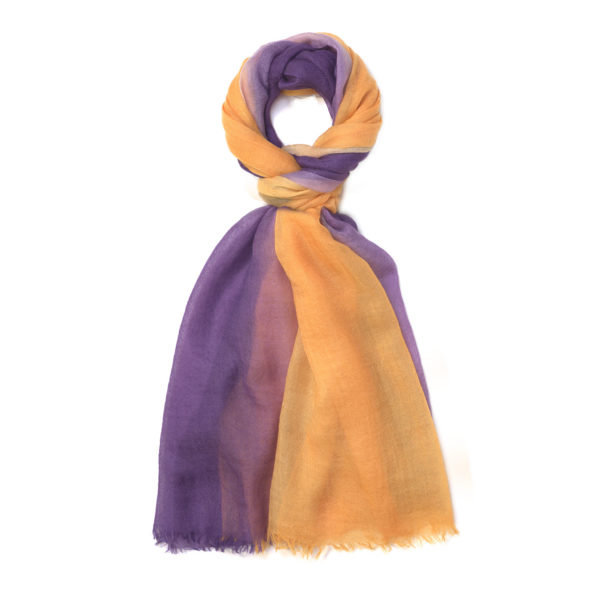 BIcolor – Purple
