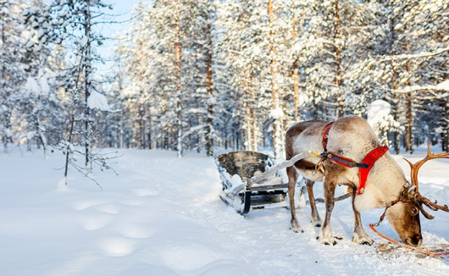 The Top Destinations For Travel In December
