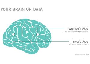 marketing-as-storytelling-brain-on-data