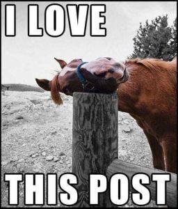 like post
