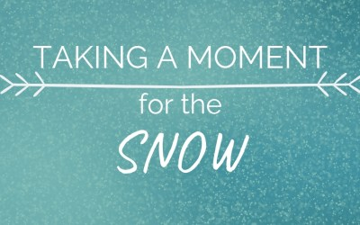 Taking a Moment…For the Snow