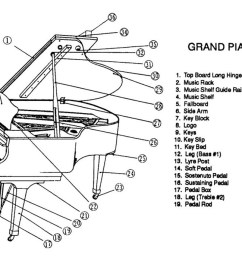 inside of a piano diagram trusted wiring diagram rh 7 nl schoenheitsbrieftaube de piano construction diagrams [ 1200 x 692 Pixel ]