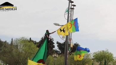صورة الراية الأمازيغية تصفع دعاة الفتنة مرة أخرى