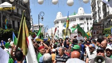 Photo de Drapeaux Amazighs : Amnesty International appelle à la libération des manifestants détenus