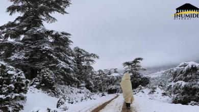 Photo de Premiers flocons de neige sur l'Aurès