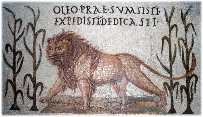 Mosaïque romaine, lions. À l'époque romaine, de nombreux animaux sauvages (autruches, éléphants et lions), aujourd'hui disparus, peuplent l'Afrique du Nord. Le lion de l'Atlas ou lion de barbarie n'existe plus aujourd'hui à l'état sauvage. Musée du Bardo, Tunisie.