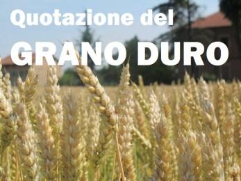 I prezzi del grano duro: la grande truffa a danno degli agricoltori del Sud Italia (pugliesi e siciliani in testa)