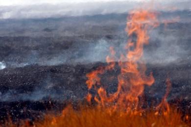 Regione siciliana: il centrosinistra sa di perdere le elezioni e sta facendo terra bruciata al 'nemico' che avanza