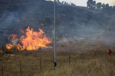 Gli incendi, complice il caldo, hanno già colpito. Che fine ha fatto l'antincendio della Forestale?