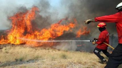 Gli incendi nella Riserva dello Zingaro, un 'mistero' che va avanti da trent'anni