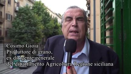 """Cosimo Gioia e il grano che arriva con le navi: """"Cosa ci hanno fatto mangiare in questi anni?"""""""