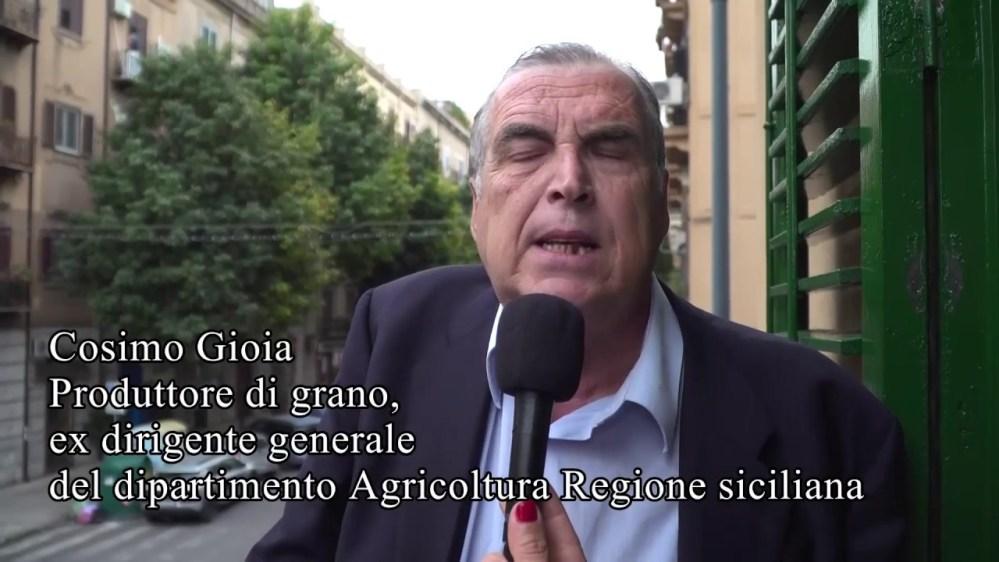 """Grano duro e 'Diritti di reimpianto' dei vigneti, Cosimo Gioia scrive al Ministro Centinaio: """"Ci stanno ammazzando"""""""