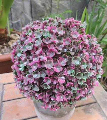 Arbol artificial con base de cemento, color verde con violeta. Foto de las hojas.