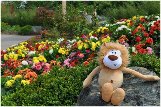 Alex at Floriade 2