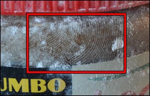 Speculoos Finger Prints Close Up