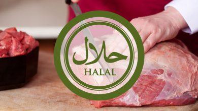 halal scaled 1