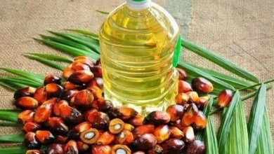 edible oil price in india 1